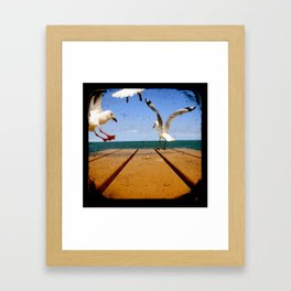 Seagulls - Number 3 from set of 4 Framed Art Print