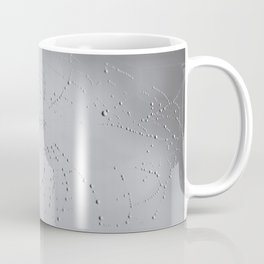 Spider Web after the storm Coffee Mug