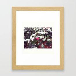 snowy beauty Framed Art Print
