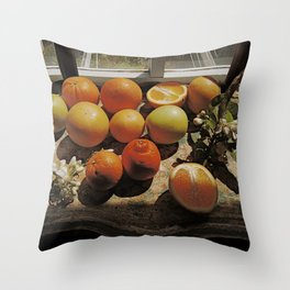 Sunny Still Life Throw Pillow