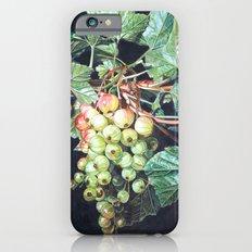BLACK CURRANTS iPhone 6s Slim Case