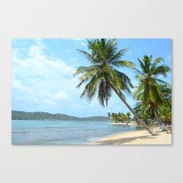 The Caribbean beach 01 Canvas Print