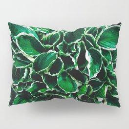 Hosta undulata albomarginata vibrant green plant leaves Pillow Sham