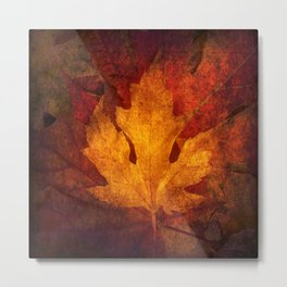 Cycle Modern Seasonal Art Design Photograph Metal Print