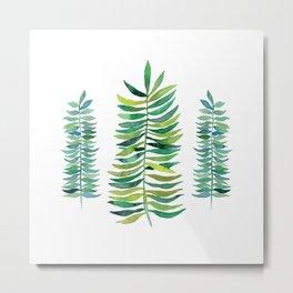 Three Ferns Metal Print