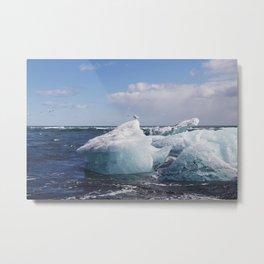 Icy Landing Metal Print