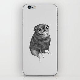 Sweet Black Pug iPhone Skin