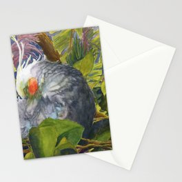 Forty Winks Stationery Cards