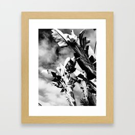 High Contrast Tropical Palms Framed Art Print