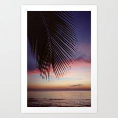 Paradise Palm Sunset Art Print