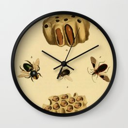 Bees Wasps And Honeycomb Wall Clock
