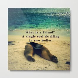 Friendship best friends quote Metal Print