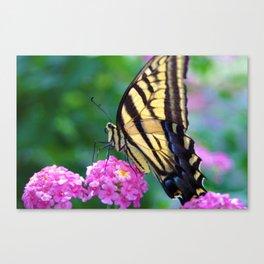 The Butterflies Garden Canvas Print