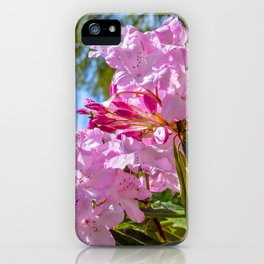 The Lost Gardens of Heligan - Pink Rhododendron iPhone Case