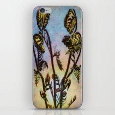 Spring Ferns iPhone & iPod Skin