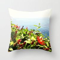 big sur Throw Pillows featuring Big Sur by Jennie Hicks - Dharma Eco Art
