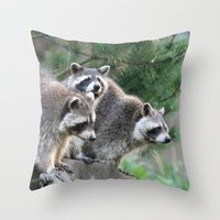 racoon Throw Pillows featuring Racoon 001 by jamfoto