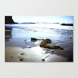 Bright Beach Canvas Print