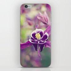 Purple Columbine iPhone & iPod Skin