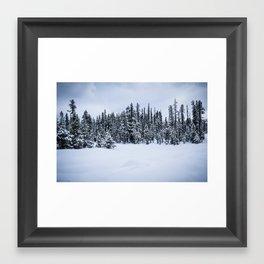 Green River IV Framed Art Print