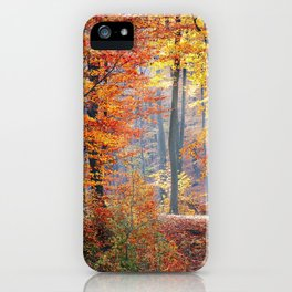 Colorful Autumn Fall Forest iPhone Case