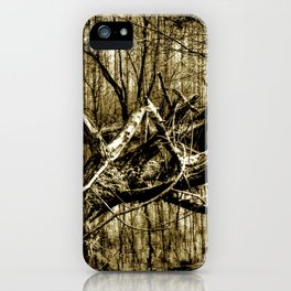 Secret Place in Nature 03 iPhone Case