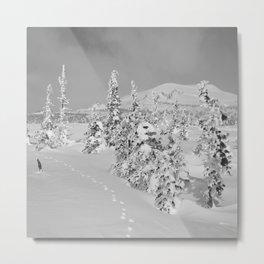 Winter day 2 Metal Print