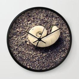 The Spiral Shell Wall Clock