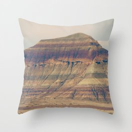 Petrified Desert Throw Pillow