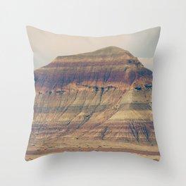 Petrified Desert Throw Pillow