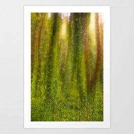 forest reverie Art Print