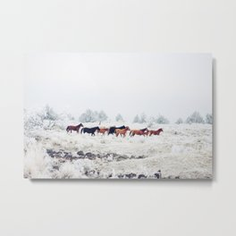 Winter Horse Herd Metal Print