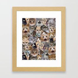 Many expressions of Cats Framed Art Print