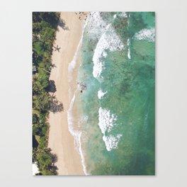 North Shore Palms Canvas Print