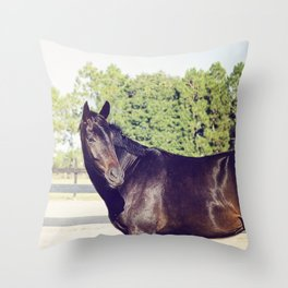 Bubba in Color Throw Pillow