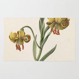 M. de Gijselaar - Branch with three yellow lilies (1834) Rug