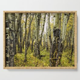 Rain-Soaked Aspen Bark Serving Tray