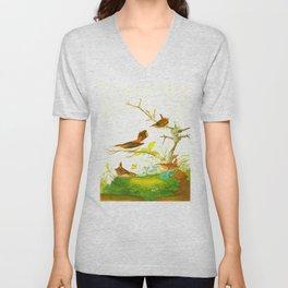 Winter Wren and Rock Wren Bird Unisex V-Neck