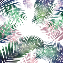Art Print - tropical leaves 2 - franciscomffonseca