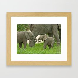 Siblings Framed Art Print