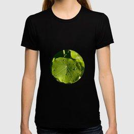 Rain drips on a nasturtium leaf T-shirt