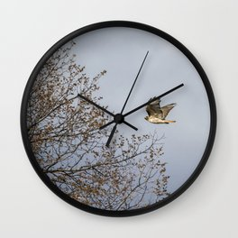 Red Tailed Hawk In Flight Wall Clock