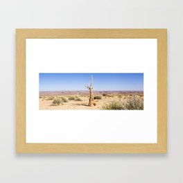Quiver Tree in Namibia Framed Art Print