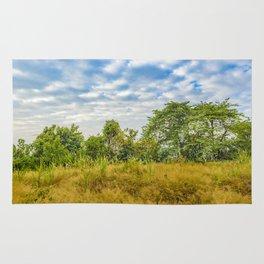 Meadow Tropical Landscape Scene, Guayaquil, Ecuador Rug