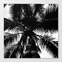 Palm with Sass  Canvas Print