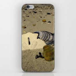 She sells seashells iPhone Skin