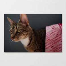 Couture Cat Canvas Print