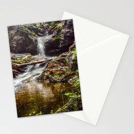 Ducklings swimming at the waterfall Stationery Cards