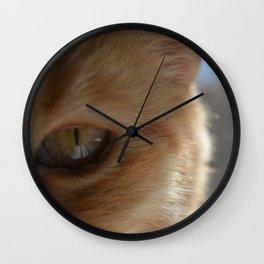 Pocko's Peepers Wall Clock