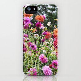 Longwood Gardens Autumn Series 369 iPhone Case
